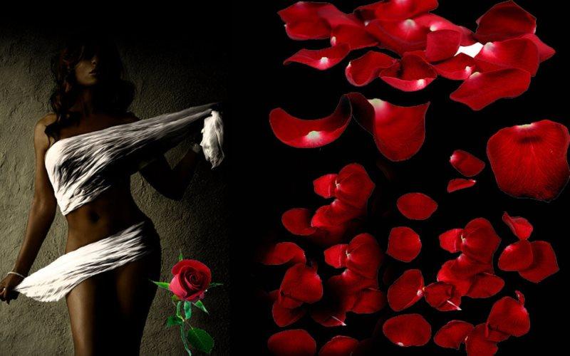 Романтични идеи с розови листенца