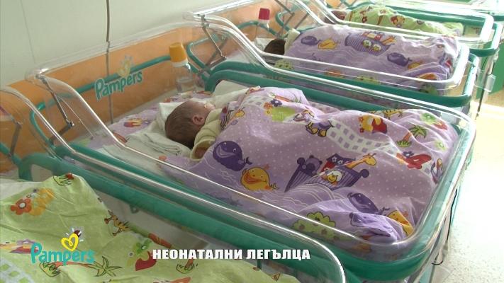 Beds Babies 2