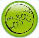 Zodiac-Fishes-485151